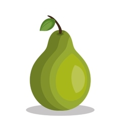 Icon pear fruit design vector