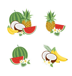 big fruit set modern flat design isolated vector image