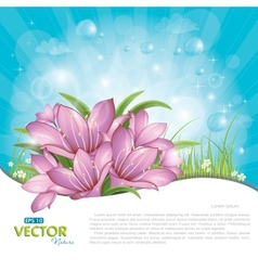pink lilies against blue sky vector image vector image