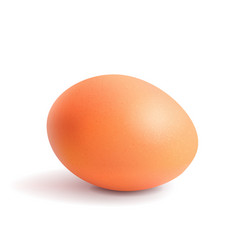 realistic chicken egg easter chicken orange vector image vector image