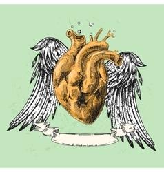 Sketch of human heart vector
