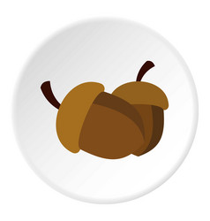 Two acorn icon circle vector