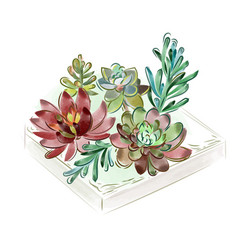 watercolor collection of vector image vector image