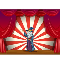 Wizard on Stage vector image vector image