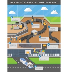 Airport infographic about luggage carousel vector