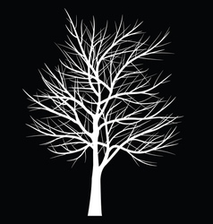 Trees with dead branchtree42 1 vector