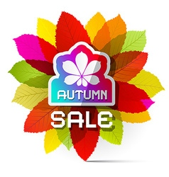 Autumn Sale with Colorful Leaves vector image
