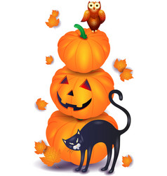 halloween pumpkin with black cat and owl vector image vector image