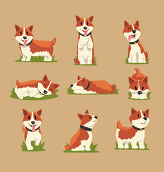 Set of cartoon red-haired corgi dogs vector