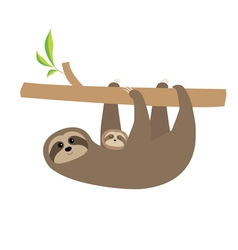Sloth mother with baby cute cartoon character tree vector