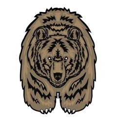 depicting a grizzly bear vector image vector image
