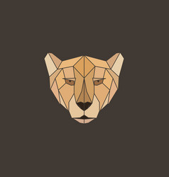 polygonal abstract geometric triangle cheetah vector image