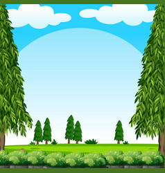 scene with green lawn and pine trees vector image vector image