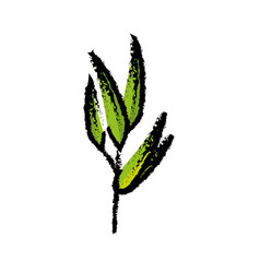 bamboo leaves icon vector image