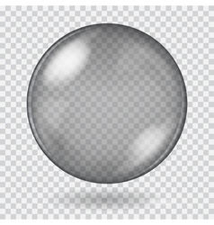 Big black transparent glass sphere vector image