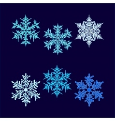 Six beautiful hex-shaped snowflakes vector
