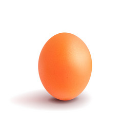 Realistic chicken egg easter chicken orange vector
