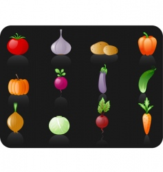 vegetables black background vector image vector image