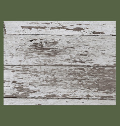 Wood grunge texture in black and white wooden vector
