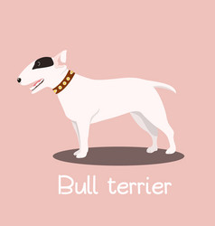 Bull terrier dog cartoon graphic design vector