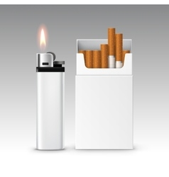 Set Plastic Metal Lighter and Pack of Cigarettes vector image