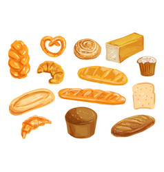 Bread watercolor set for bakery shop design vector