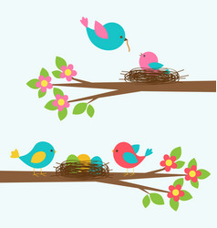 two cute families of birds on blooming branch tree vector image