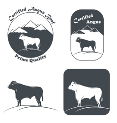 Angus bull in white and black vector