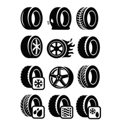 Tyre icons vector