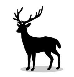 deer woodland black silhouette animal vector image