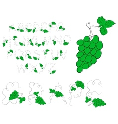 green grape alphabet vector image