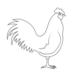 home cockanimals single icon in outline style vector image