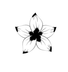 Line rustic flower with natural petals vector