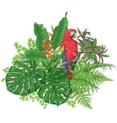 Tropical plants and sitting macaw vector