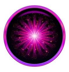 Firework button vector image