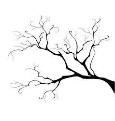 Silhouette of the branch tree vector