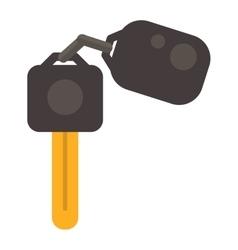Car keys vector image