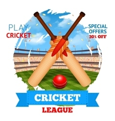 Cricket stadium vector