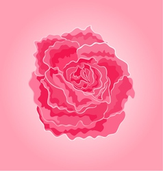 Roses pink simple symbol of love vector image