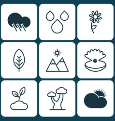 Set of 9 nature icons includes oak seashell vector