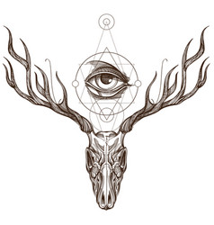sketch of deer skull and all seeing eye outline vector image