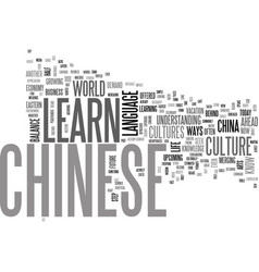 Why learn chinese text word cloud concept vector