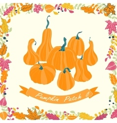 Pumpkin patch card design vector