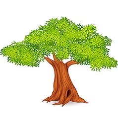 Cartoon of tree vector image