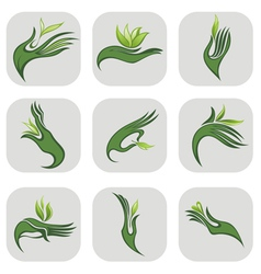 Hands with green leaf vector image vector image
