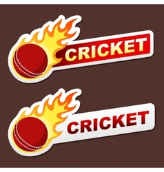 Cricket flame sticker banner label tag vector