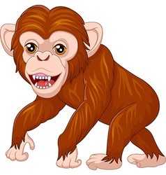 Cute monkey posing isolated on white background vector image vector image