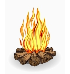 Isolated camp fire on white vector