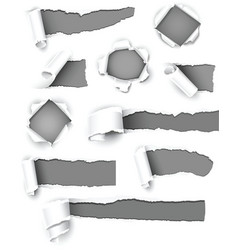 gray paper vector image vector image