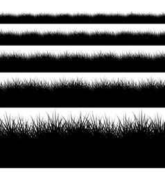 modern black grass set on white vector image vector image